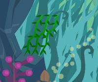 Kelp - top left
