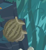Barrel Sponge - bottom left