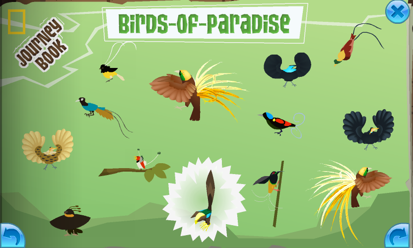 The completed Birds Of Paradise page in the Journey Book