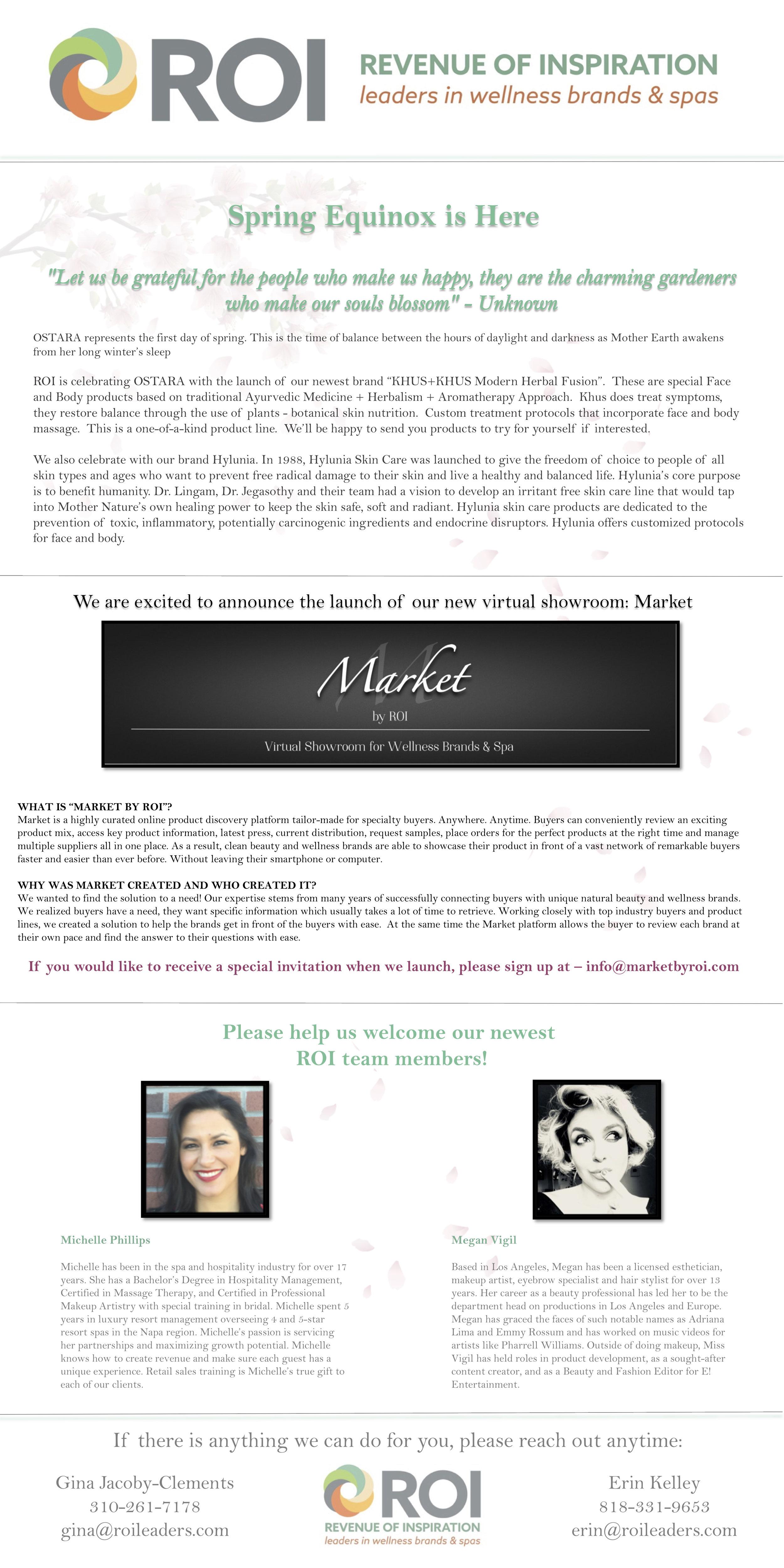 ROI Newsletter.jpg