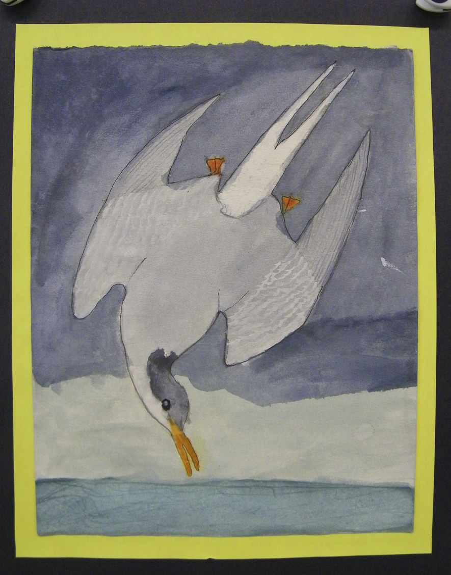 Students read the book  Ok For Now in English class, which focused on a boy who used John James Audubon's prints as a metaphor for what is going on in his life. In art class students looked at his bird prints and created their own watercolor renderings.