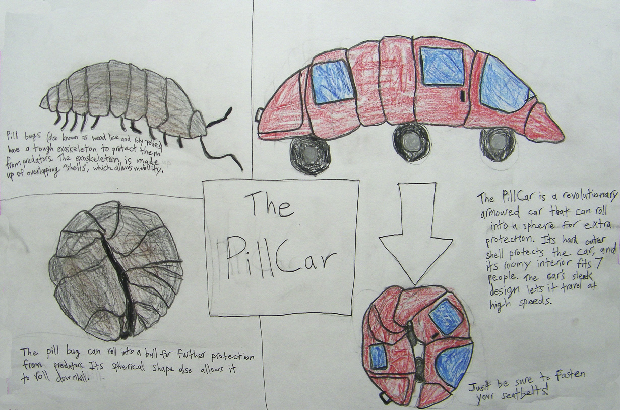 As an introduction to biomimicry, students looked at many inventions that were inspired by nature. They then came up with their own inventions based on chosen natural features.