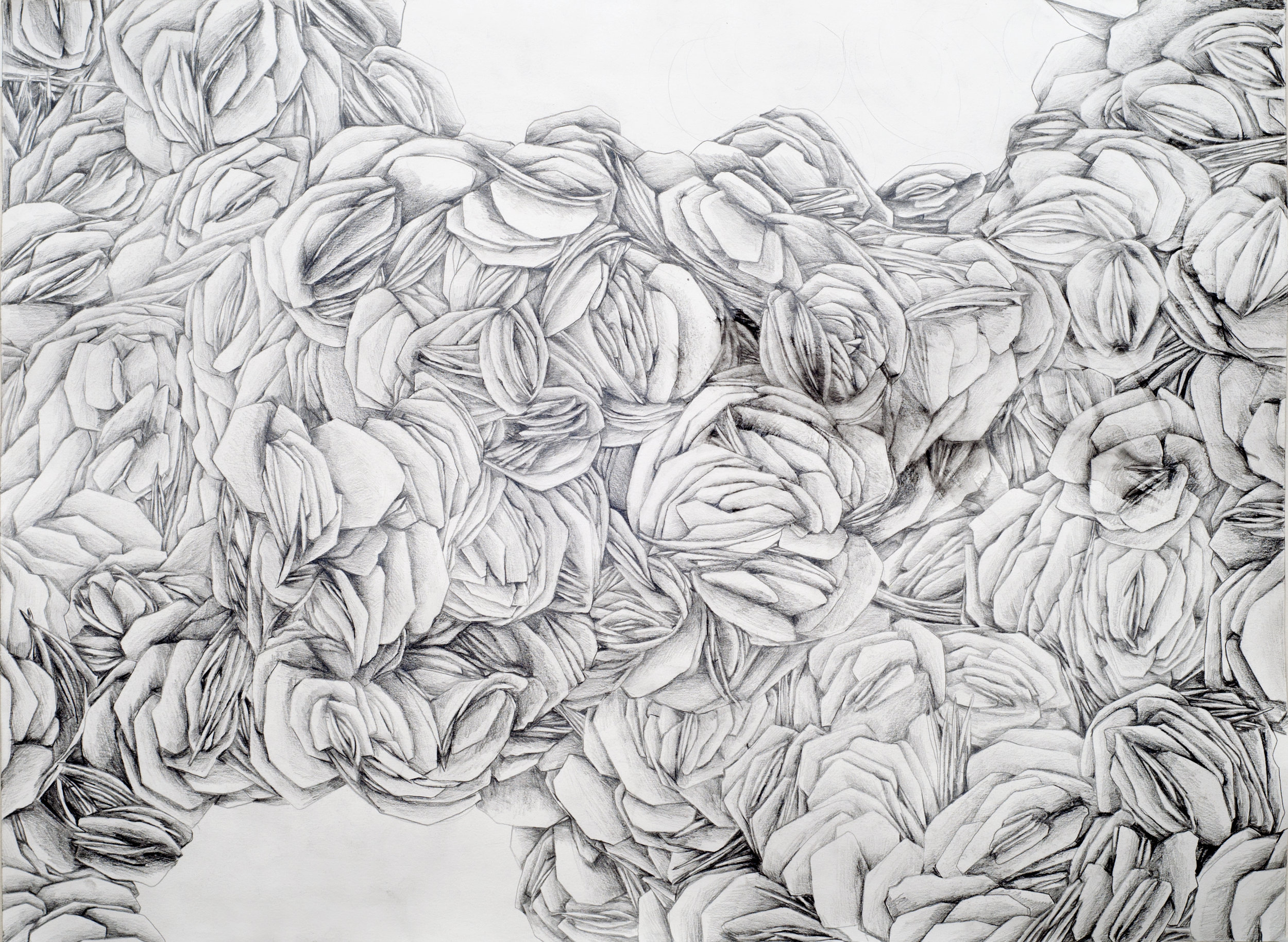 """100x Hematite  water-soluble graphite pencil on paper, 22"""" x 30""""   2014"""