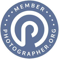 PO-Badge-Medium.png