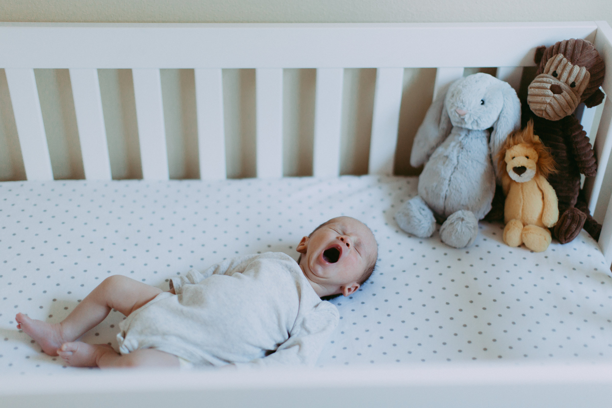 Brownridge Family Newborn Session-94.jpg