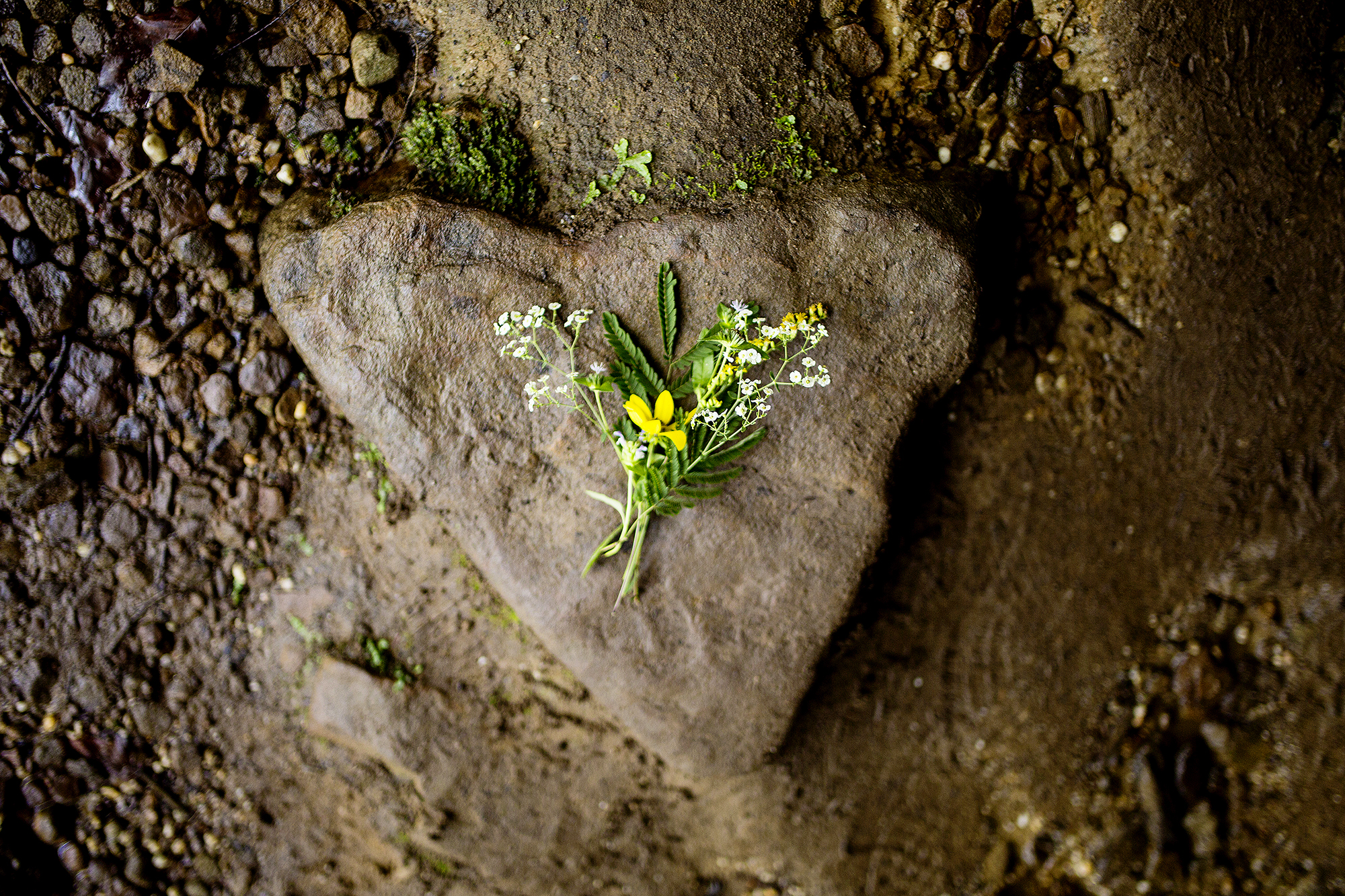 Seriously_Sabrina_Photography_Outdoor_Adventure_Engagement_Cumberland_Falls_SD30.jpg