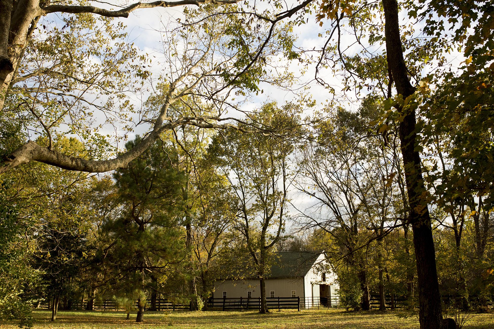 Seriously_Sabrina_Photography_Lexington_Kentucky_Wedding_Photographer_Boone008.jpg
