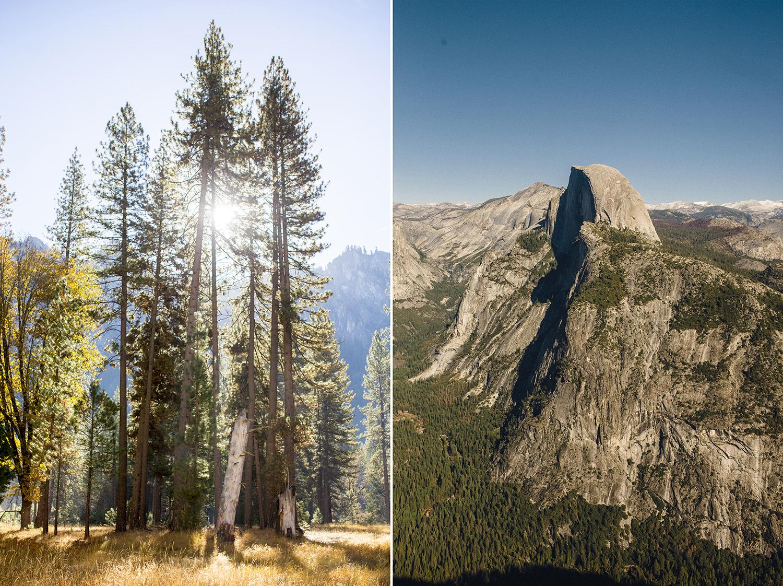 Seriously_Sabrina_Photography_Ky_Ca_Yosemite_Proposal_Engagement_210.jpg