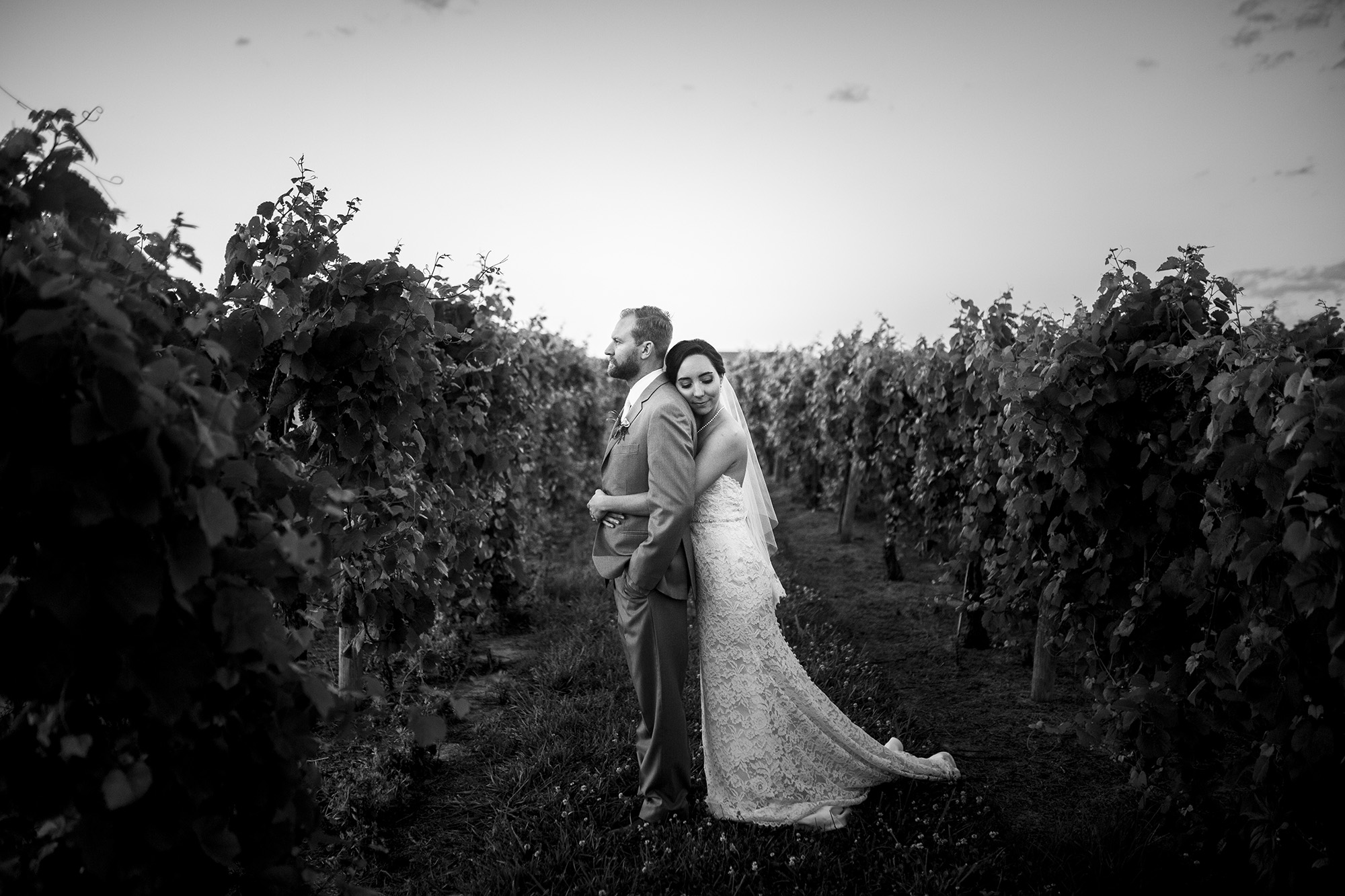 Seriously_Sabrina_Photography_Lexington_Kentucky_Talon_Winery_Wedding_Kjellsen183.jpg