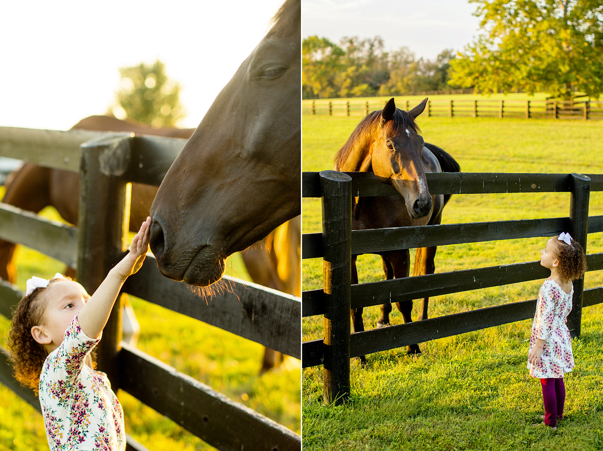 Seriously_Sabrina_Photography_Lexington_Kentucky_Family_Photographer_Seven_Acre_Farm_JimmieKristyn14.jpg