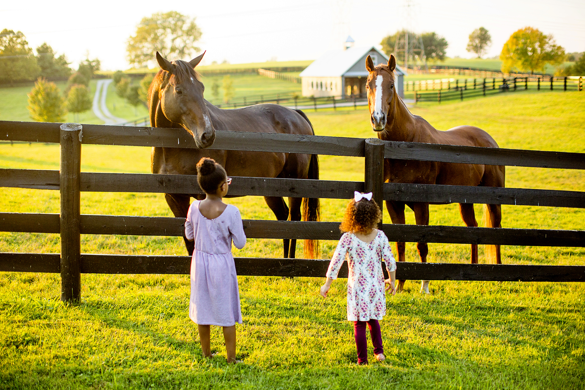 Seriously_Sabrina_Photography_Lexington_Kentucky_Family_Photographer_Seven_Acre_Farm_JimmieKristyn22.jpg
