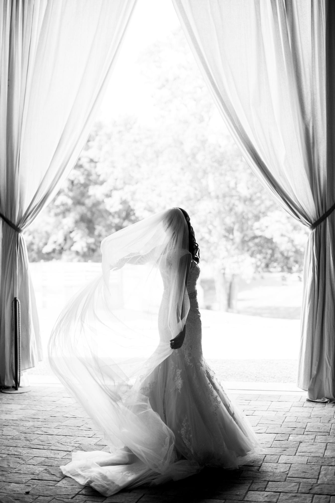 Seriously_Sabrina_Photography_Bowling_Green_Kentucky_Highland_Stables_Wedding_Wolff21.jpg