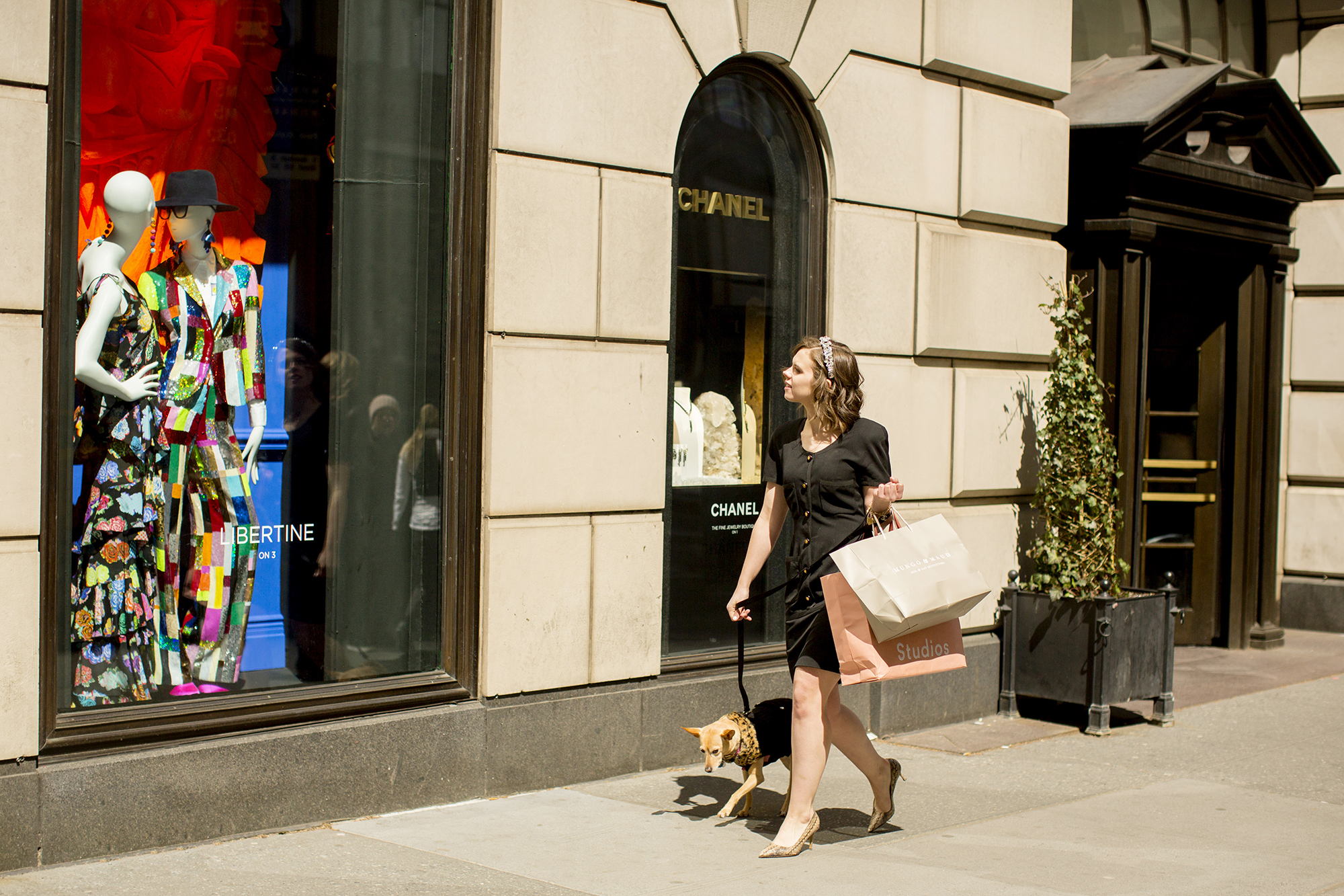 Seriously_Sabrina_Photography_New_York_City_NYC_Gossip_Girl_Dog_Blogger_Little_Holly_34.jpg