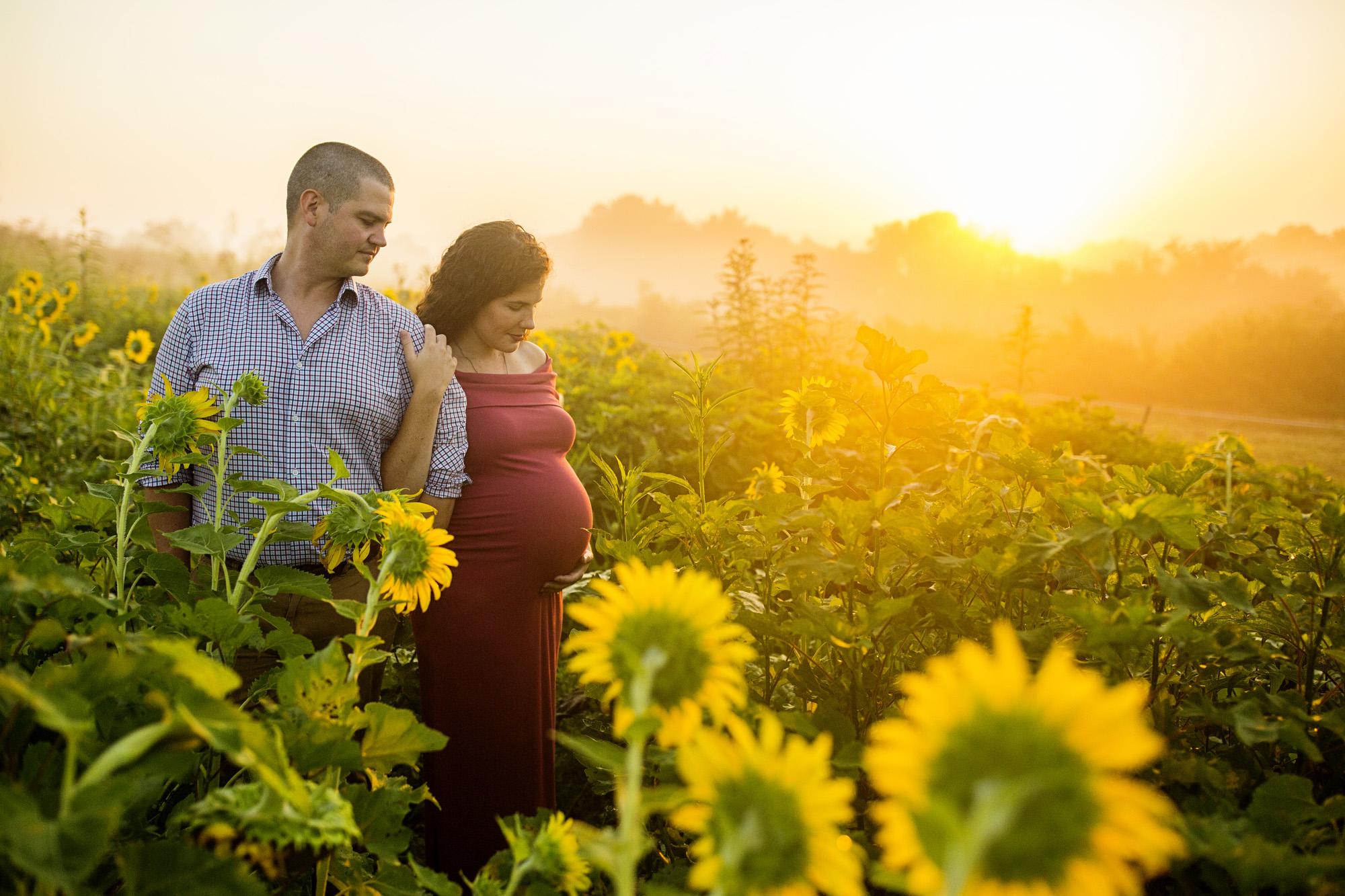 Seriously_Sabrina_Photography_Lexington_Frankfort_Kentucky_Maternity_Mini_Sunflowers_Johns10.jpg