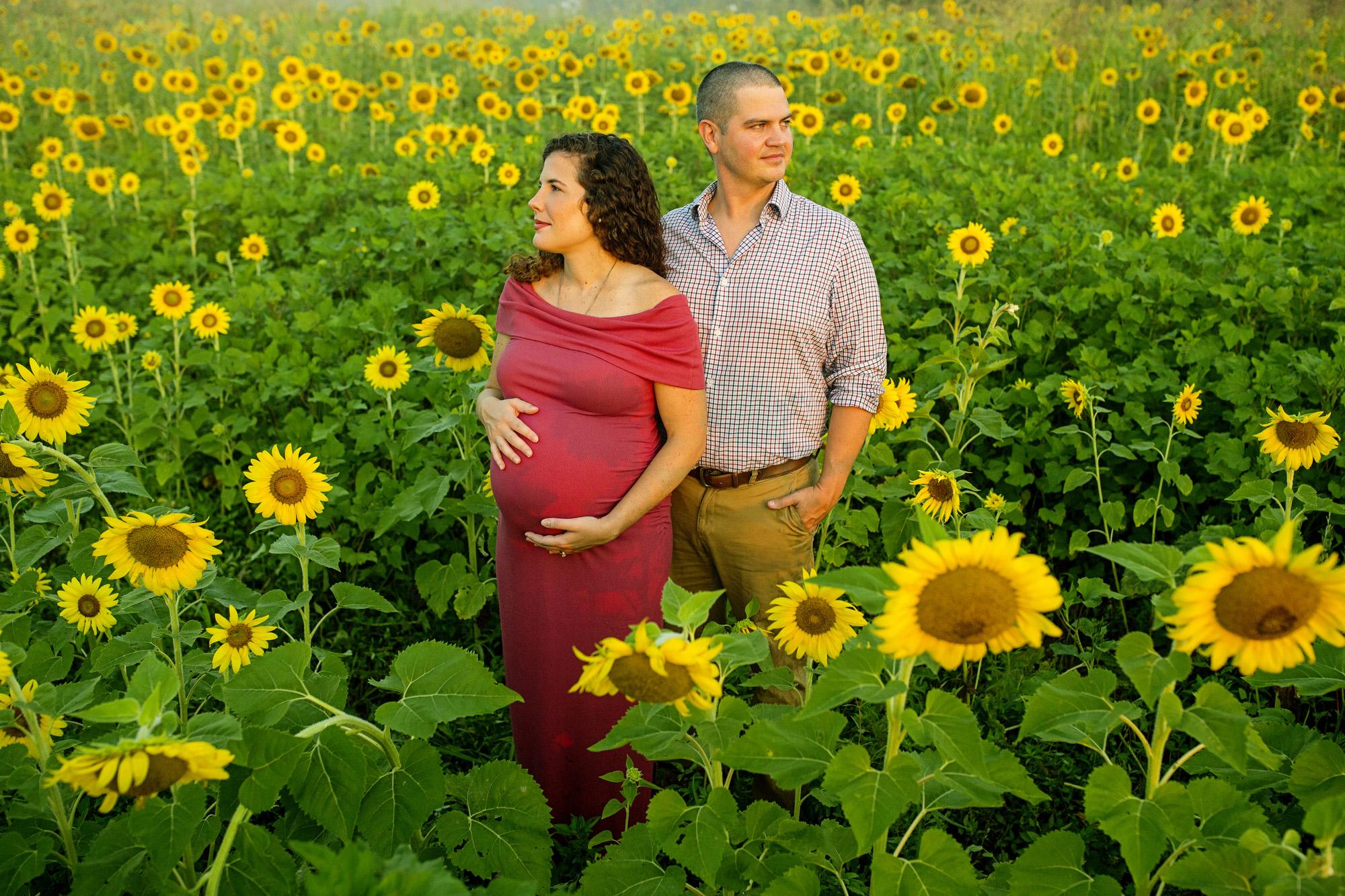 Seriously_Sabrina_Photography_Lexington_Frankfort_Kentucky_Maternity_Mini_Sunflowers_Johns17.jpg