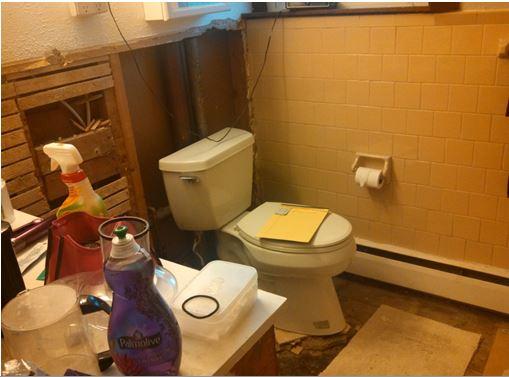 Toilet before
