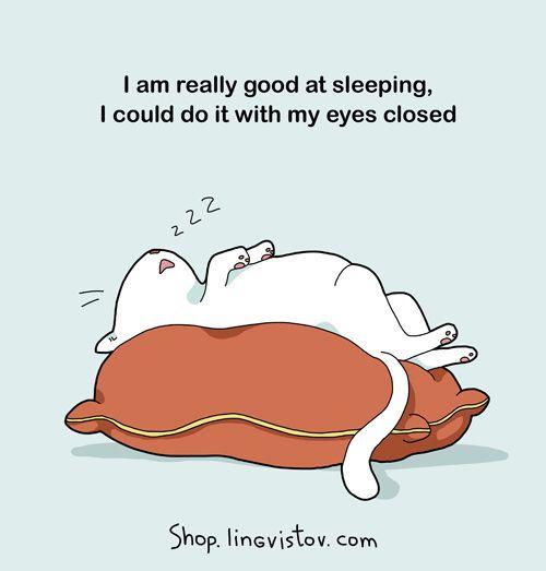 cute-comics-cat-jokes.jpg
