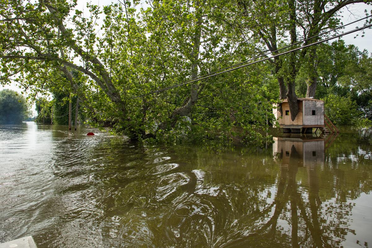 33C_JennaCarliePhotography_June 5, 2019_West Alton Flood_Treehouse.jpg