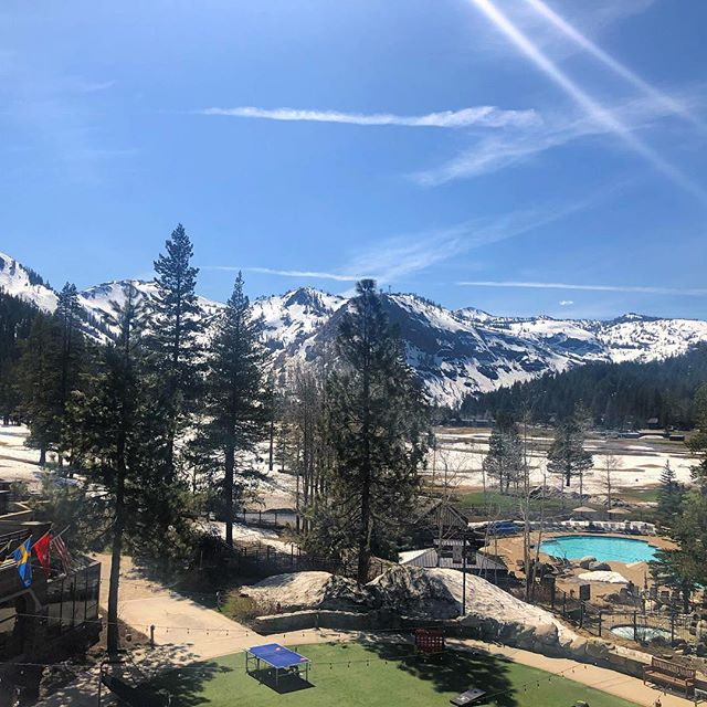 ArteMedics attended the Veterinary Endoscopy Society meeting in Tahoe,CA. Thank you to all of the amazing veterinarians who educated us and discussed such challenging procedures!