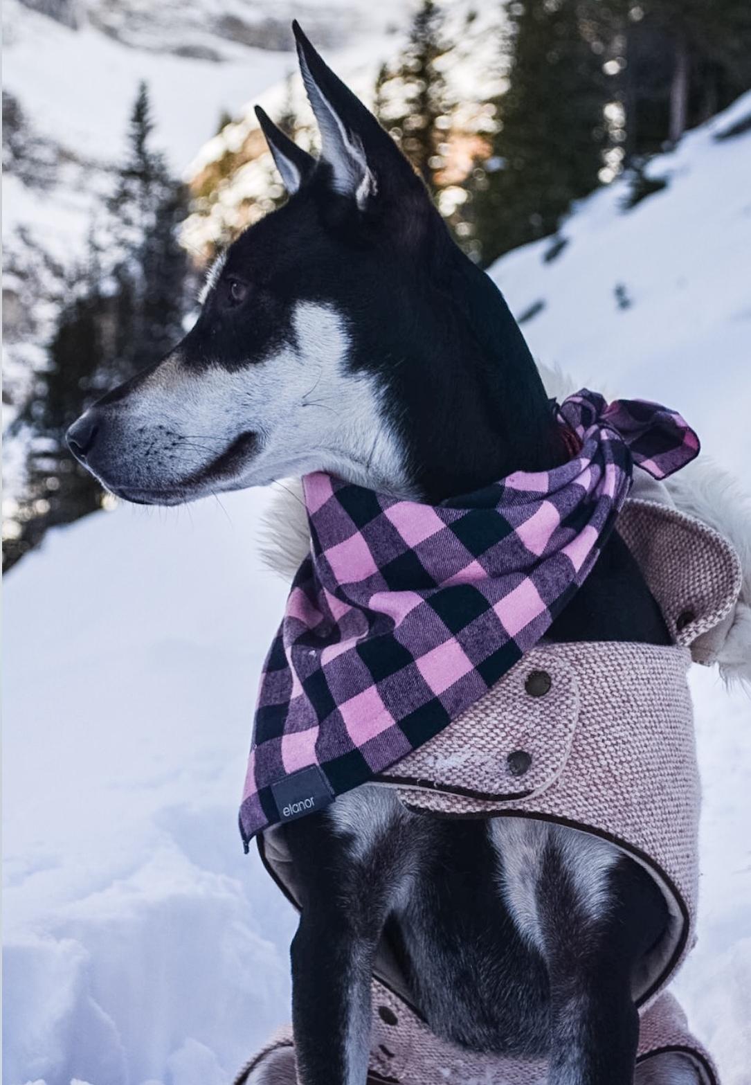 elanor bandana and coat on Holly