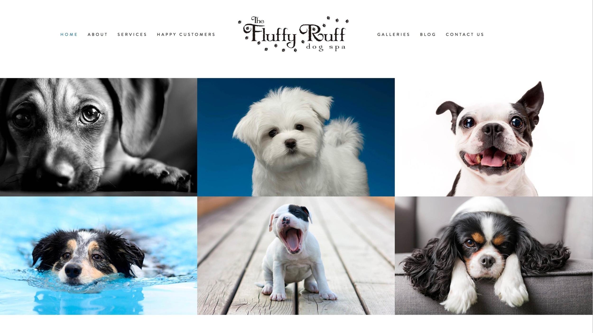 Fluffy Ruff.jpg