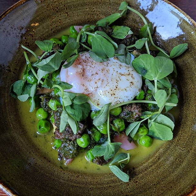 Poached Jidori Egg + Semolina Dumpling w/ Morel Mushrooms, Pickled Ramps, English Peas and Ramp Pesto! @yarobzdivad @chefbrucehill