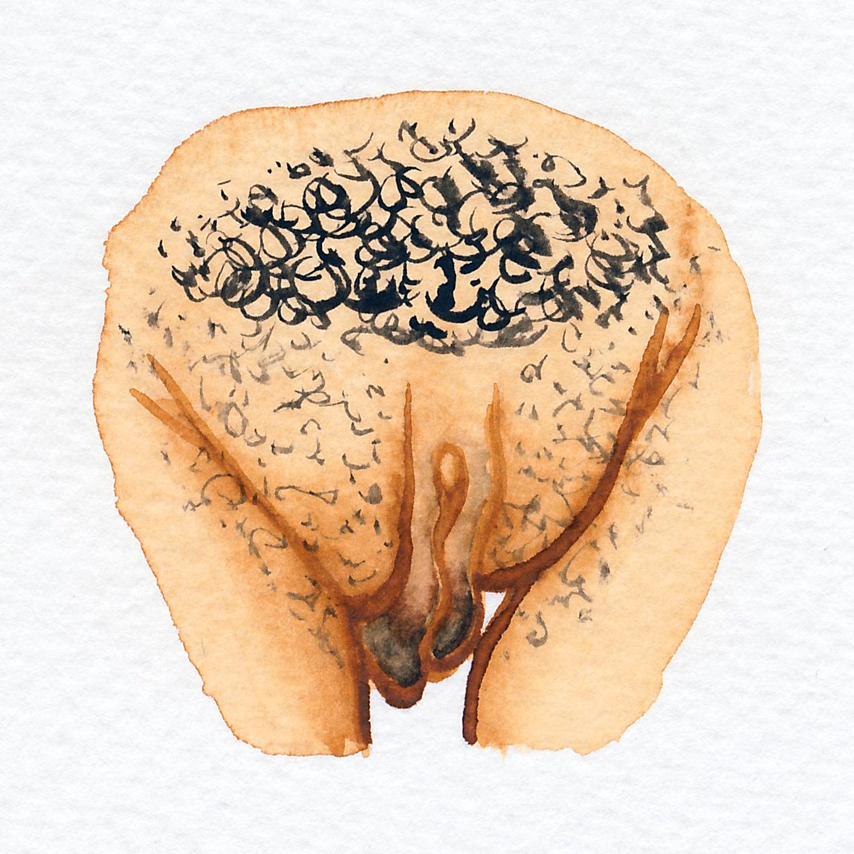 Vulva Gallery Brown78.jpg
