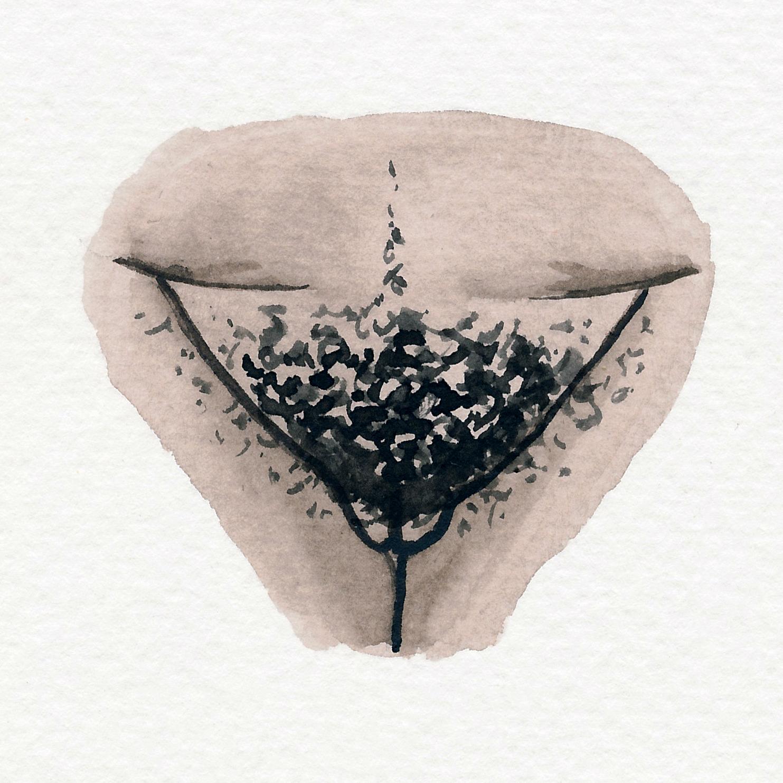 Vulva Gallery Brown88.jpg