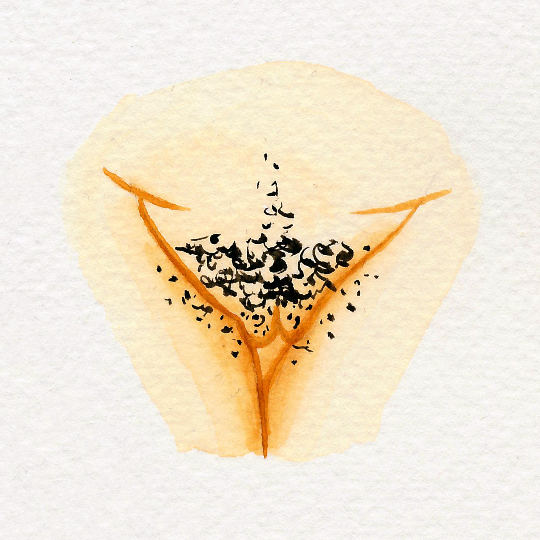 Vulva Gallery Yellow44.jpg