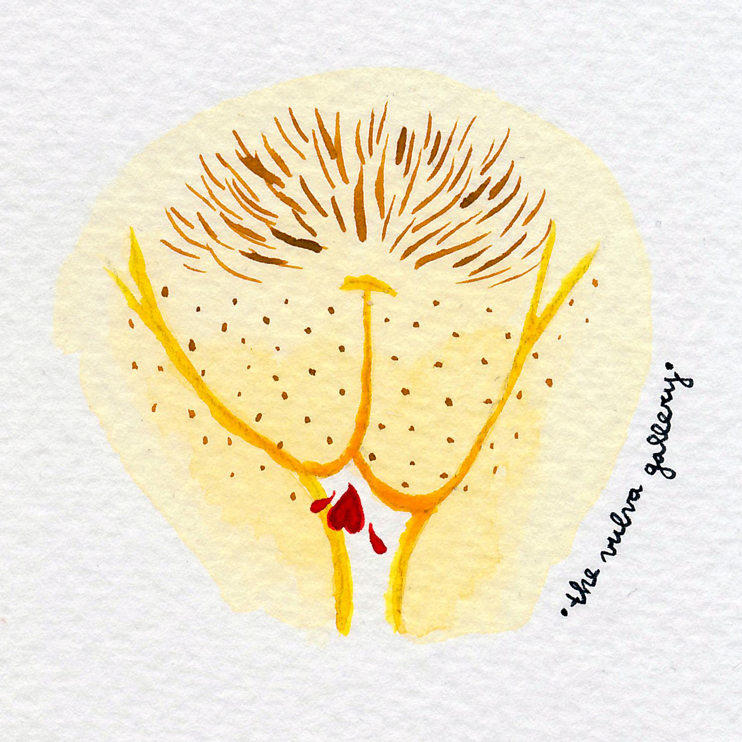 Vulva Gallery Yellow52.jpg