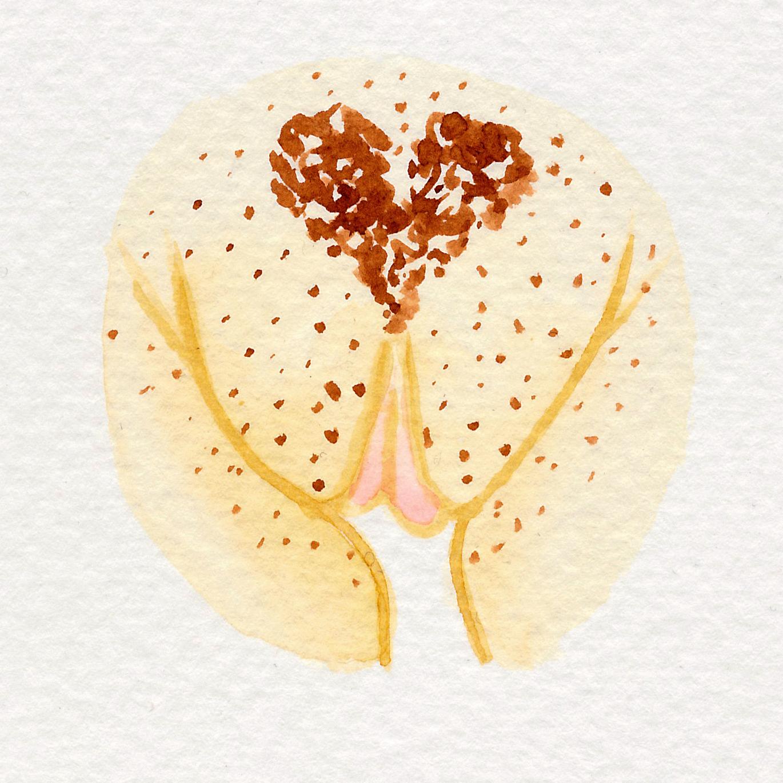 Vulva Gallery Yellow59.jpg