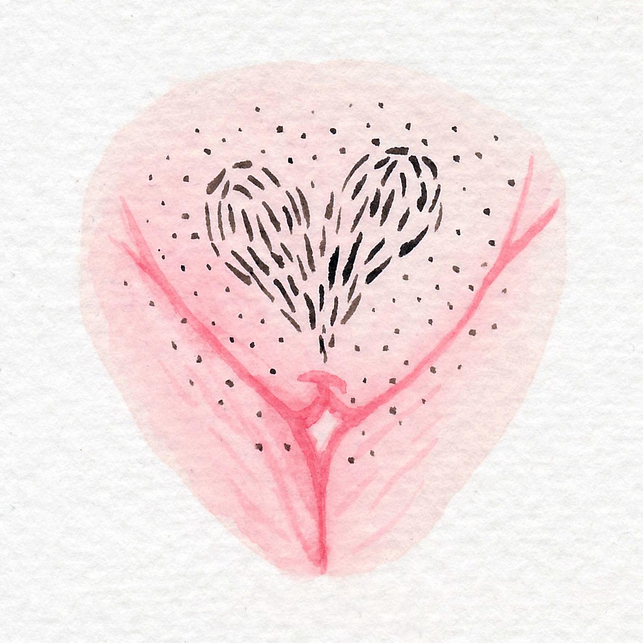 Vulva Gallery Pink69.jpg