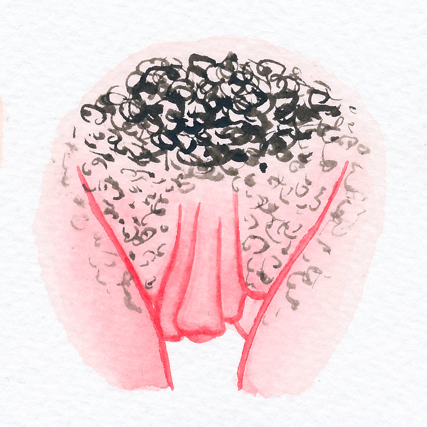 Vulva Gallery Pink117.jpg