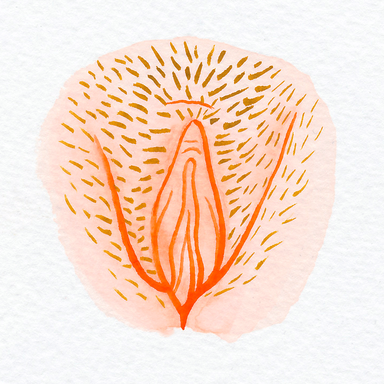 Vulva Gallery Orange4.jpg