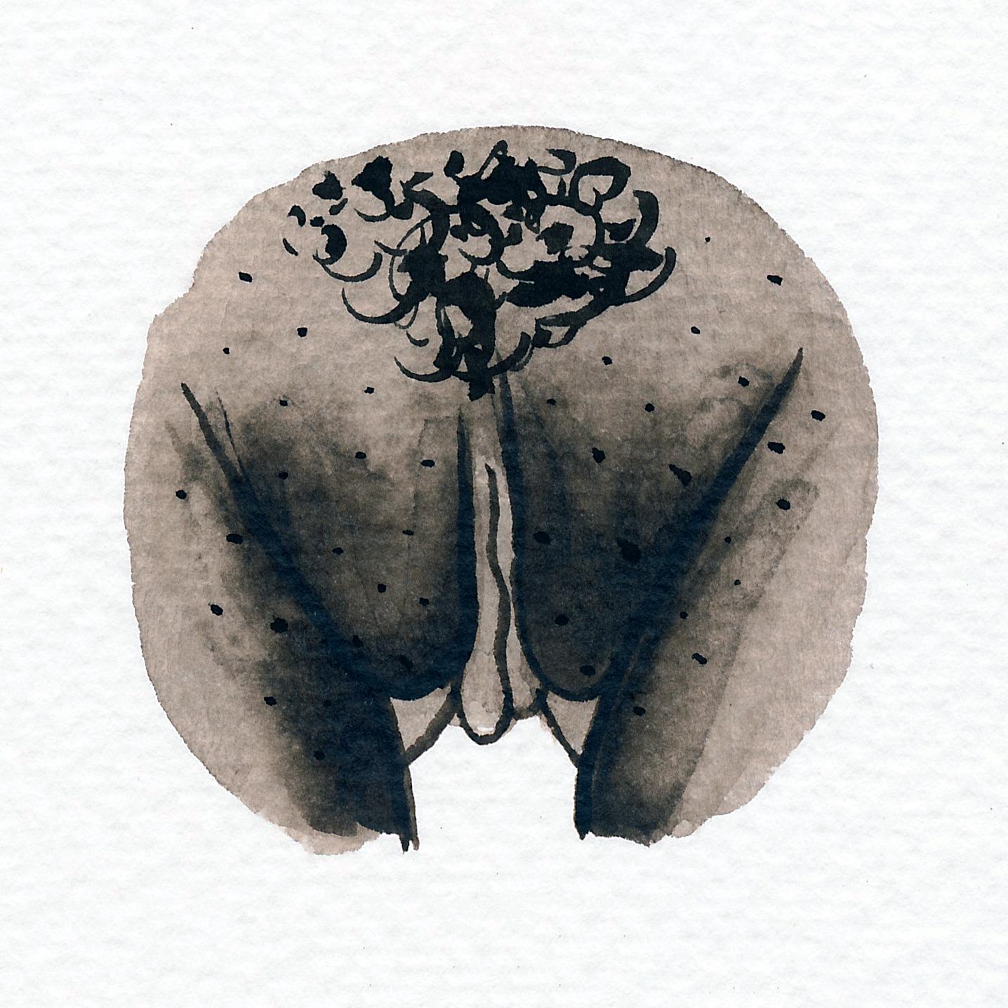 Vulva Gallery Brown173.jpg