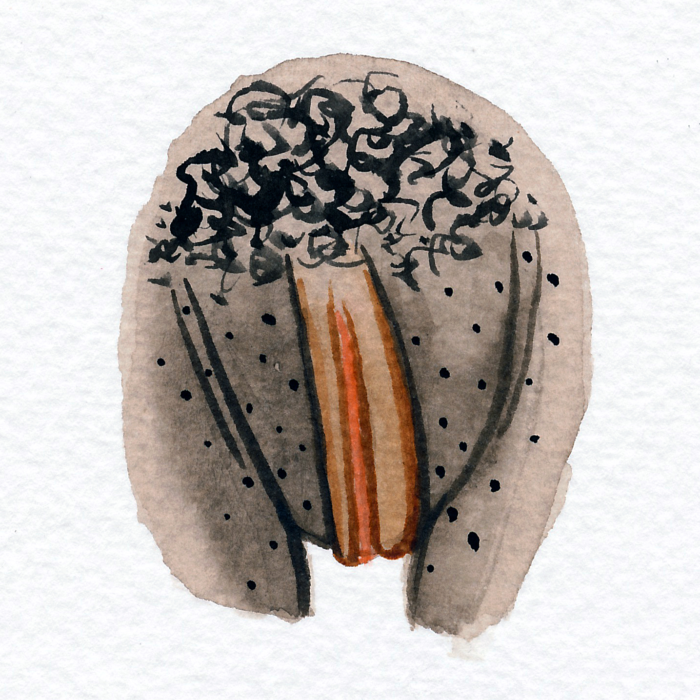 Vulva Gallery Brown167.jpg
