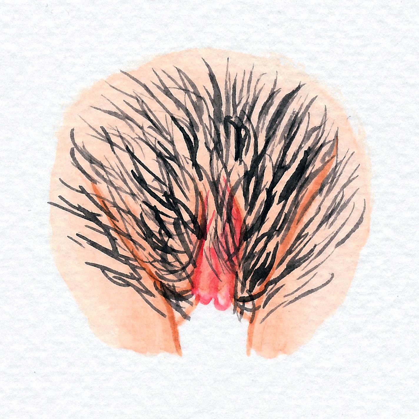 Vulva Gallery Pink132.jpg