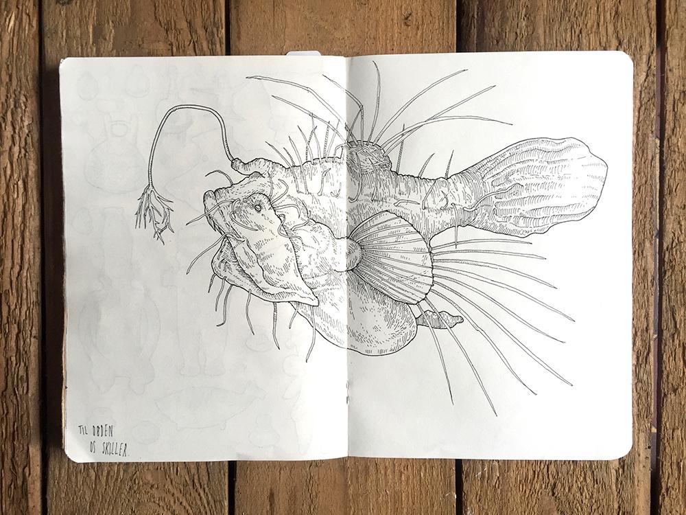 ANGLER-FISH.jpg