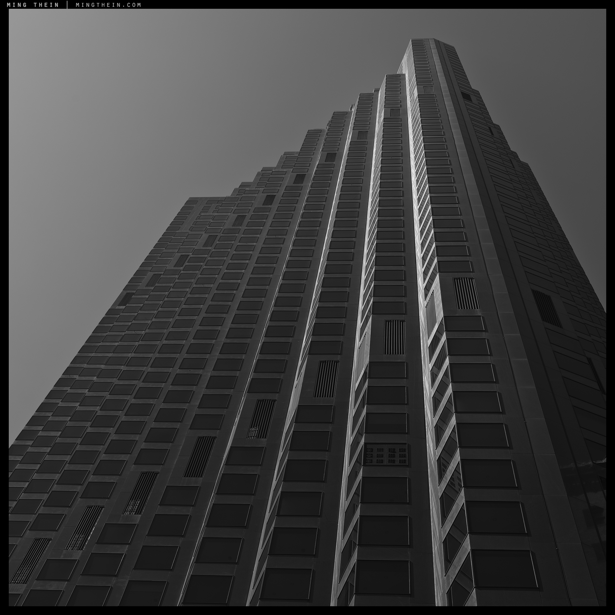 44_64Z3447 verticality XLIV copy.jpg