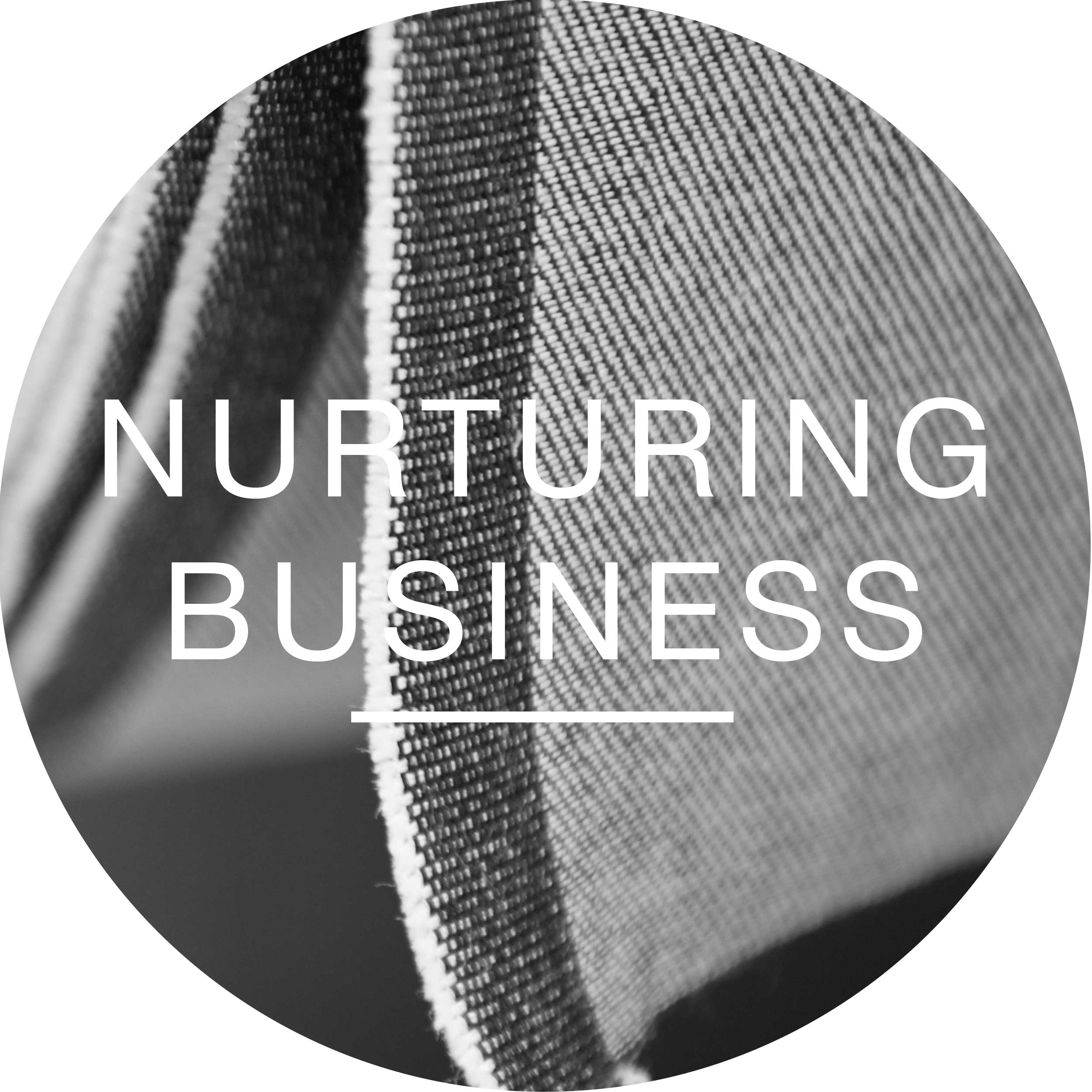 Our Focus Buttons_NURTURING  BUSINESS-04.jpg