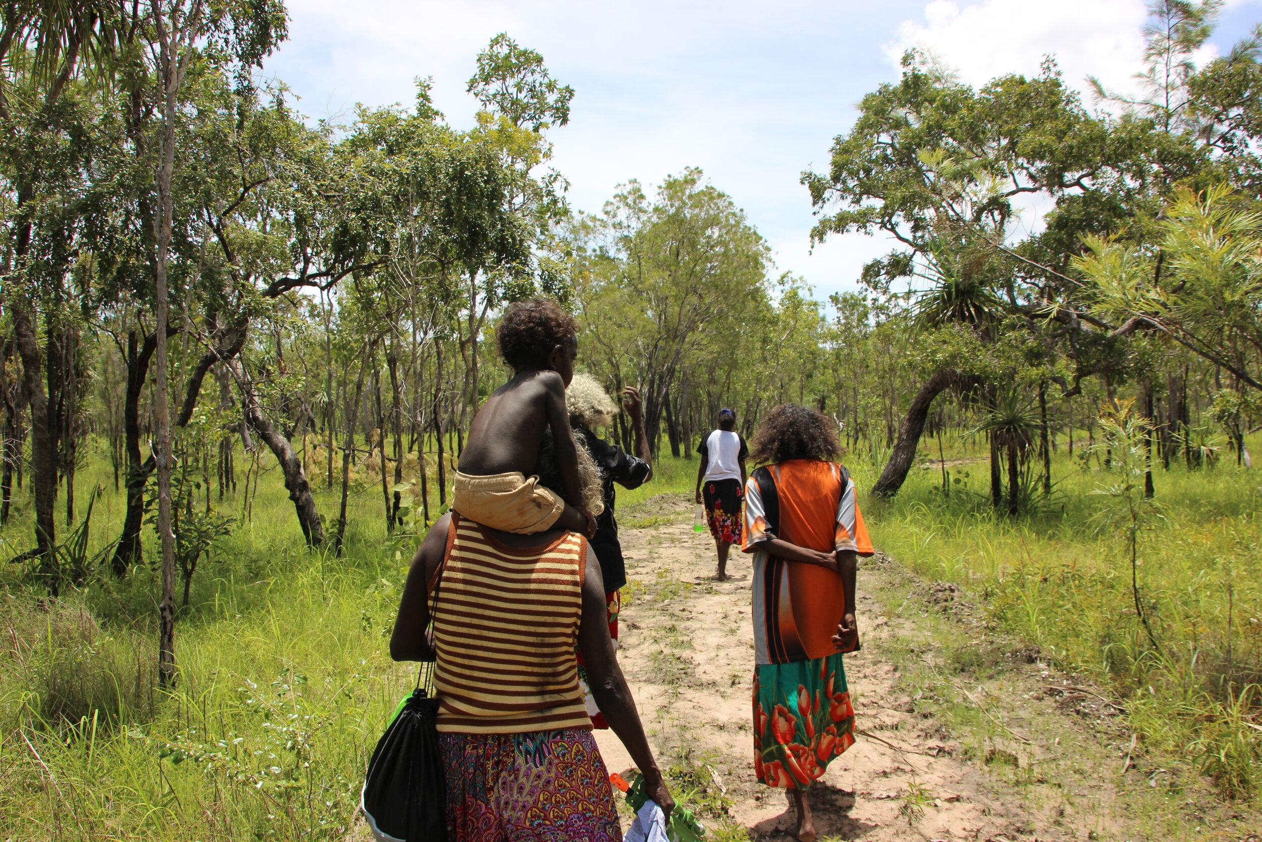 Image | By Ingrid Johanson. Babbarra women visiting billabong near Barridjowkeng homeland.