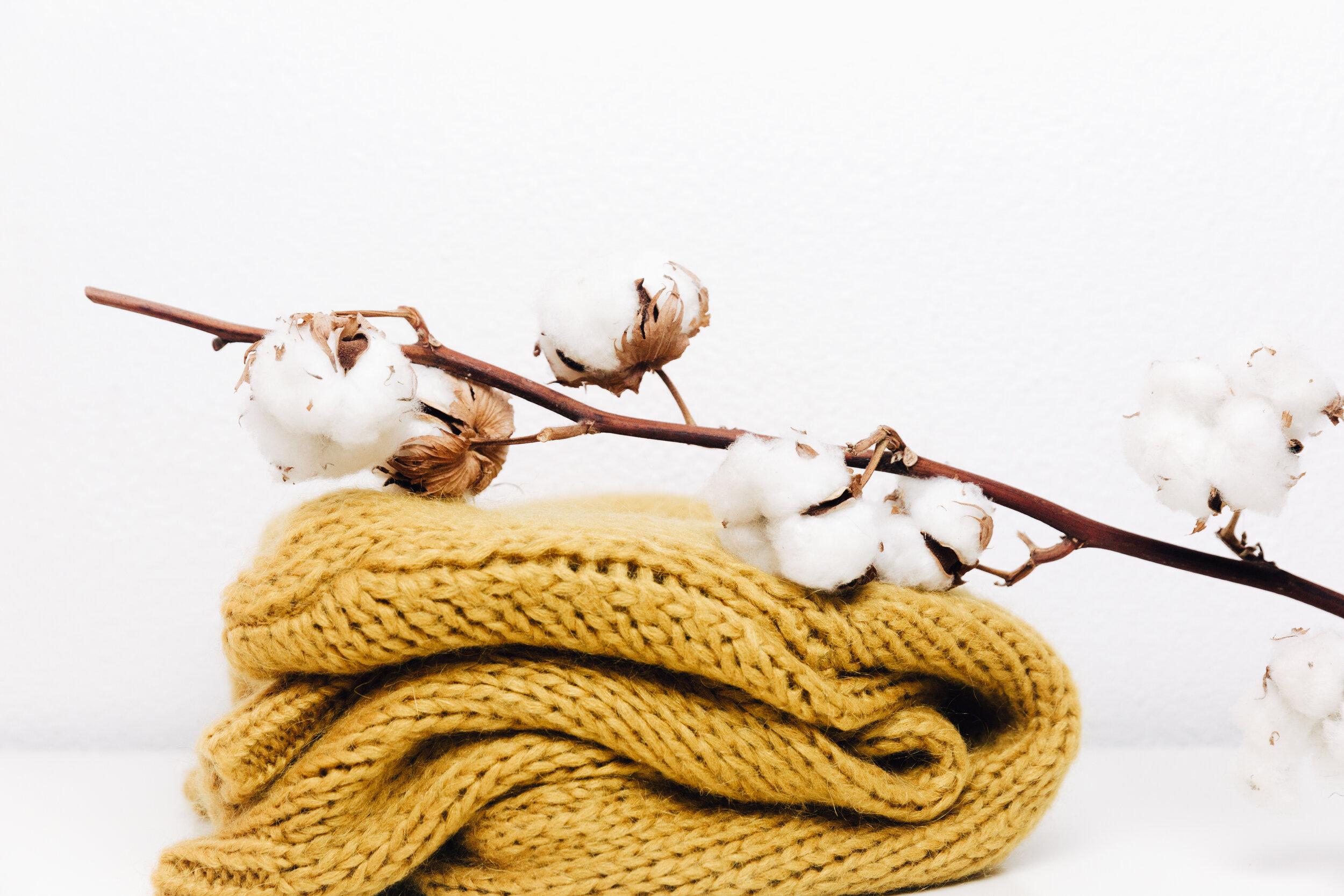 NWM Cotton on Sweater.jpg