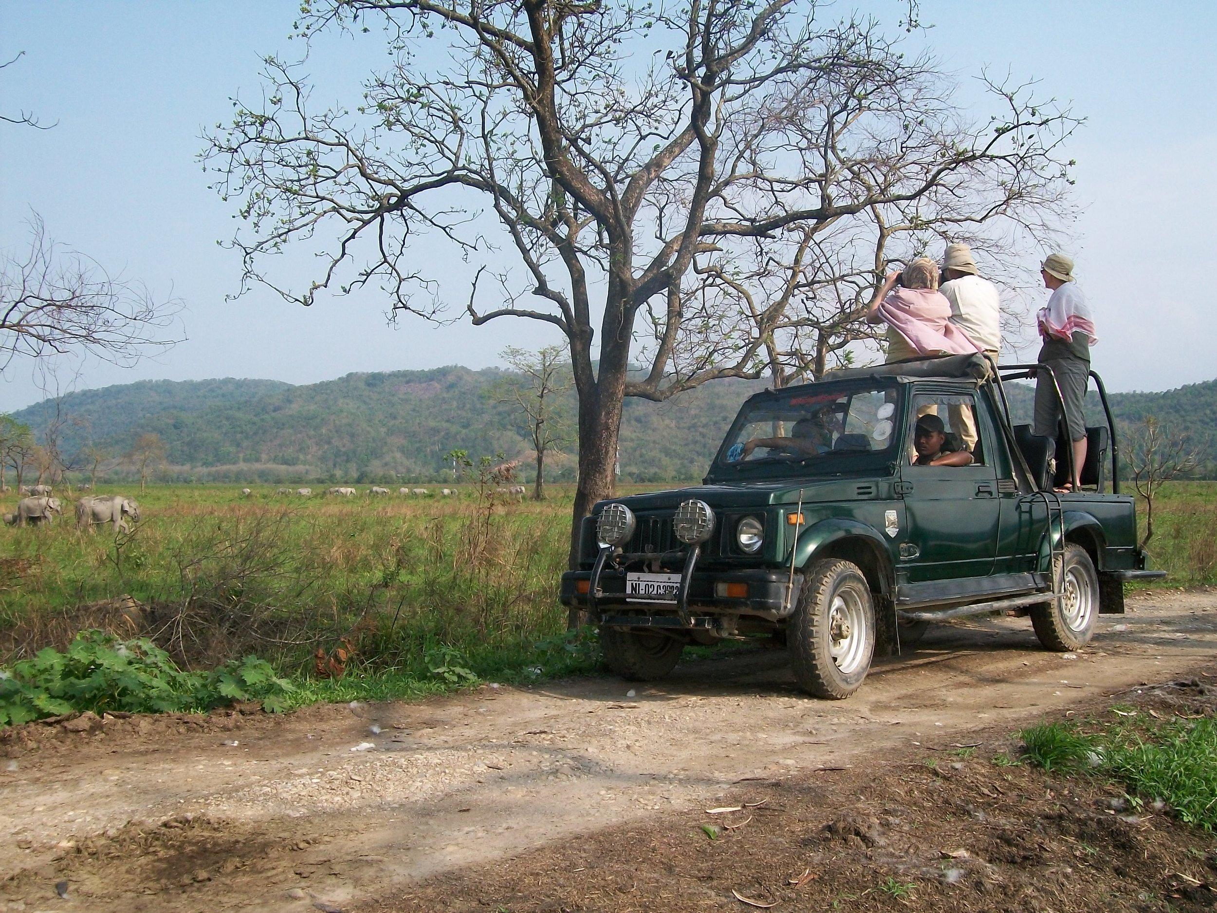 Jeep safari in KNP.jpg
