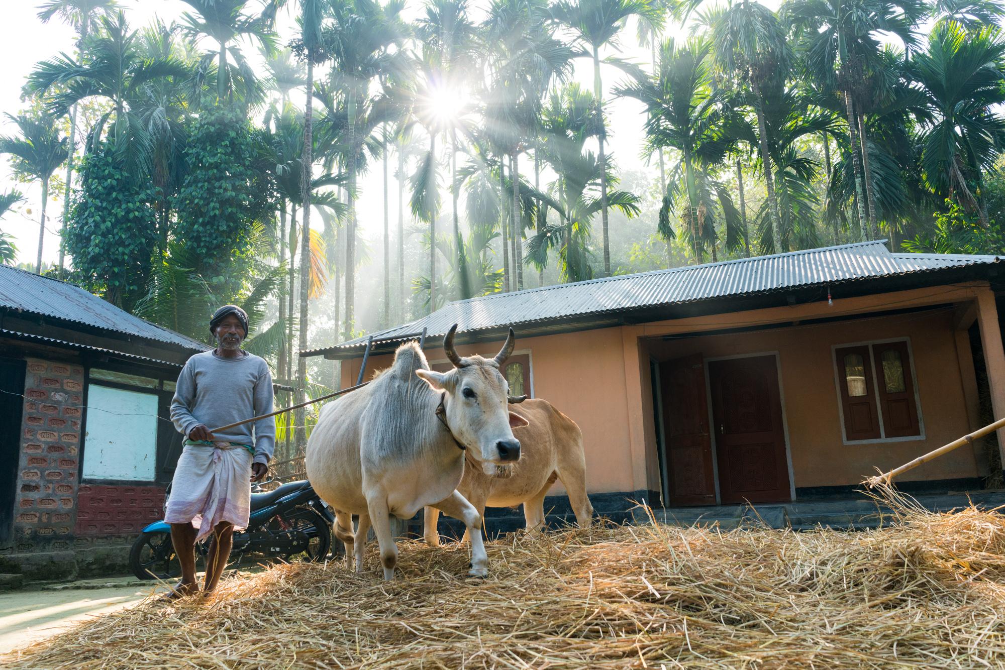 Daily life in an Assamese village