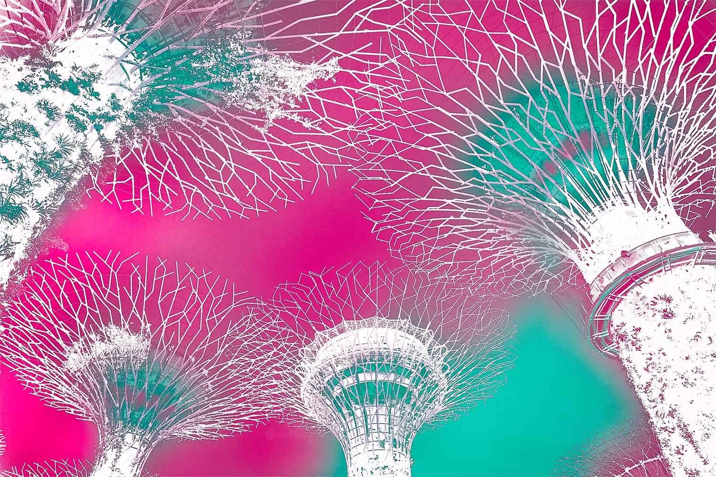 linda-preece-supertrees-jade-pink.jpg