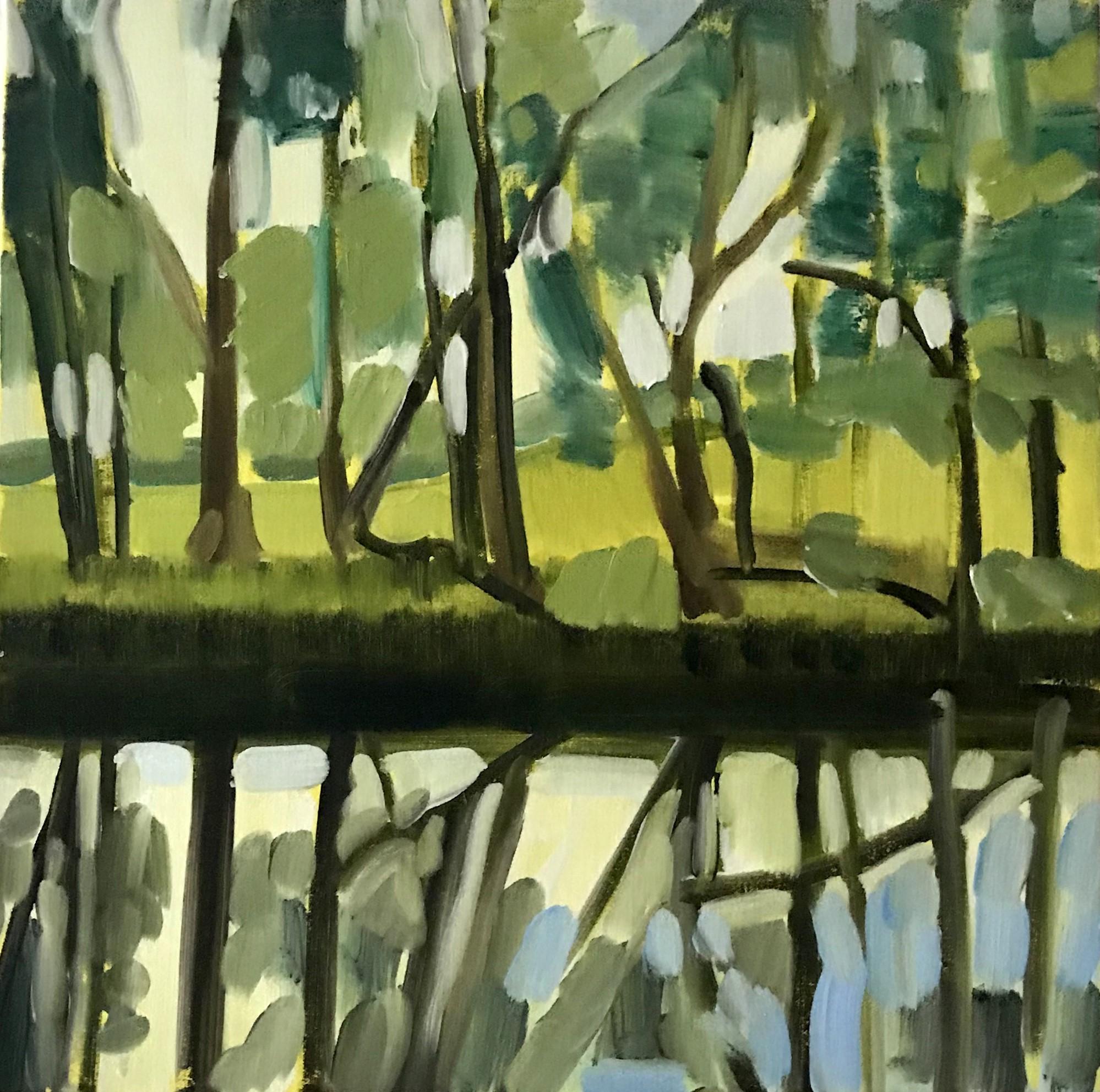 Morning light 46 x 46cm oil on canvas 2019