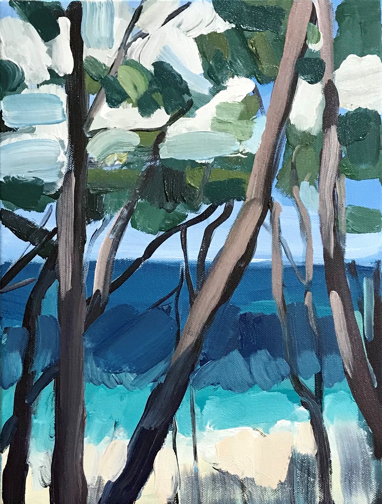 Jervis Bay 30 X 40cm acrylic on canvas 2019