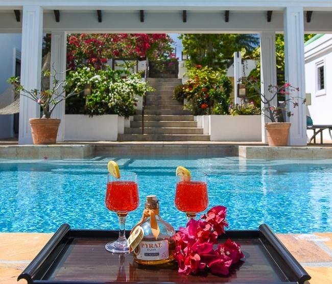 Rum drinks w infinity pool shot.jpg