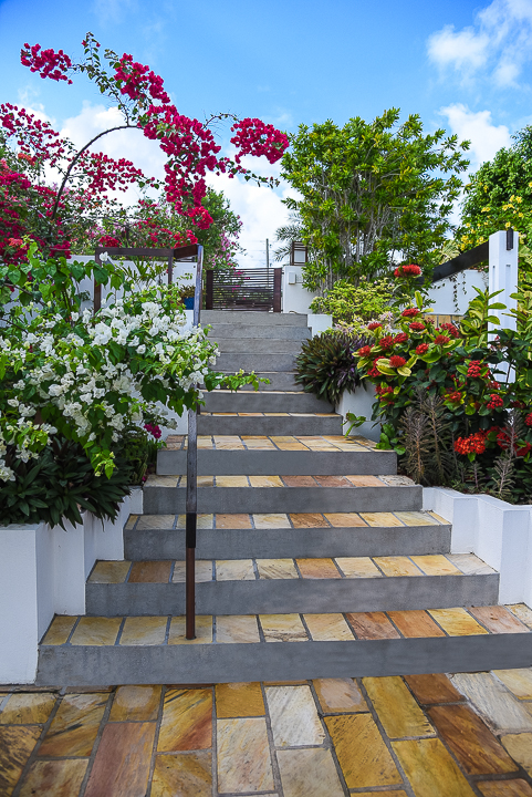 Entrance - Stairs to Driveway.jpg