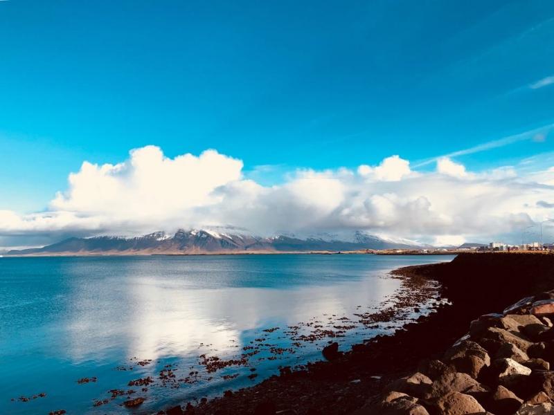 Pretty Reykjavik
